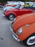 Many Volkswagens