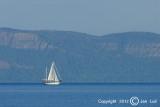 Sailing 082