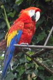 Guatemala-0368.jpg