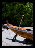 Canoe And Paddle Still Life