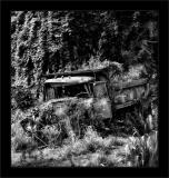 Jungle Cascade Truck BW