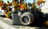 Leica III (F) w/ Elmar 50/3.5 extended