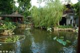 Qinghui Garden DSC_7804
