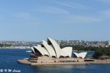 Sydney and NSW