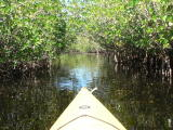 I enjoyed kayaking and it is a great workout
