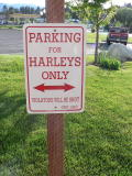 I did not spot any Harleys parked there