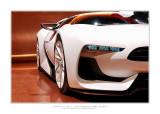 Mondial de l'Automobile 2008 - Paris 24