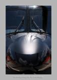 Salon Aeronautique du Bourget 2009 - 2