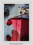 Boats 28 (Socoa)