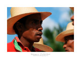 Madagascar - The Red Island 251