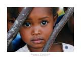 Madagascar - The Red Island 260