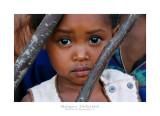 Madagascar - The Red Island 263