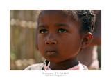 Madagascar - The Red Island 282