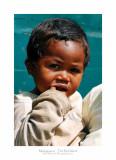Madagascar - The Red Island 320