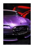 Mondial de l'Automobile 2010 - Paris 49