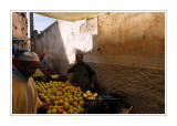 Moroccan souks and medinas 7