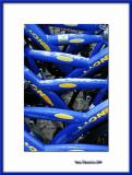 Blue bikes, Zandvoort