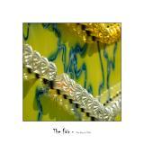 The Fair 41