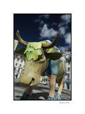 Lisboa, cows parade 1