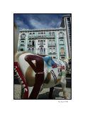 Lisboa, cows parade 5