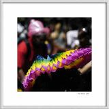 Carnaval tropical 14