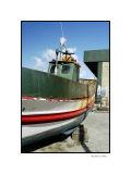 Nazares harbour 8