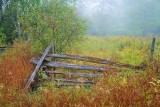 Old Fence 19862