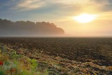 Clouded Sunrise 20080926