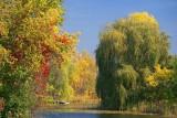Delta Creek 20906
