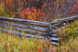 Old Fence 22470