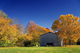 Autumn Tobacco Barn 24798