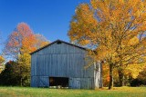 Autumn Tobacco Barn 24795