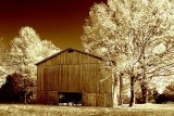 Autumn Tobacco Barn 24795 (pseudo IR tinted)