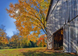 Autumn Tobacco Barn 24793