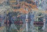 Lake Martin 25430