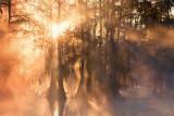 Misty Lake Martin Sunrise 25820