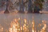 Sunrise Reflection 26667