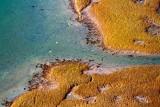Wetlands 29770