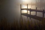 A Dock & Foggy Night 20081218