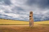 Texas Moai 36736