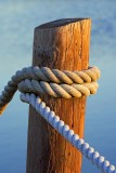 Piling & Rope 20090119