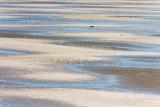 Tidal Flats 37408