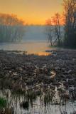 Ottawa River At Sunrise 48353-8