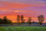 Sunrise Clouds 20090601