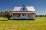 House In A Field 00297-8