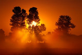 Misty Sunrise 20090614