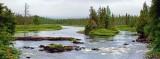 Jackpine River 01798-9