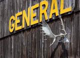 'GENERAL' Antlers 02294