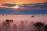 Sunrise Fog 20090905