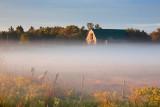 Misty Pasture 07970